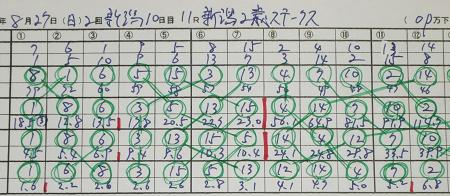 新潟2歳ステークス.jpg
